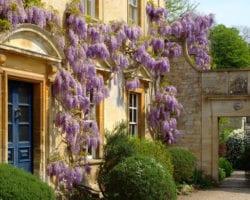 Iford Manor Gardens